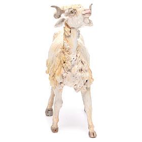 Mouton 30cm crèche Angela Tripi s4