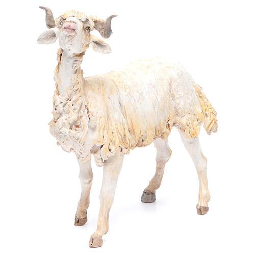 Mouton 30cm crèche Angela Tripi 1