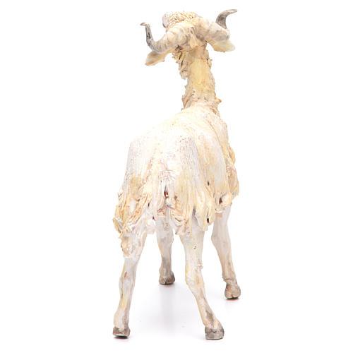 Mouton 30cm crèche Angela Tripi 3
