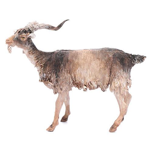 Chèvre 30cm crèche Angela Tripi 1