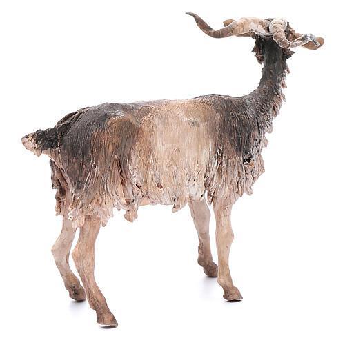 Chèvre 30cm crèche Angela Tripi 3