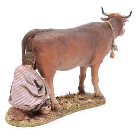 Pastore che munge la mucca cm 13 Angela Tripi s4