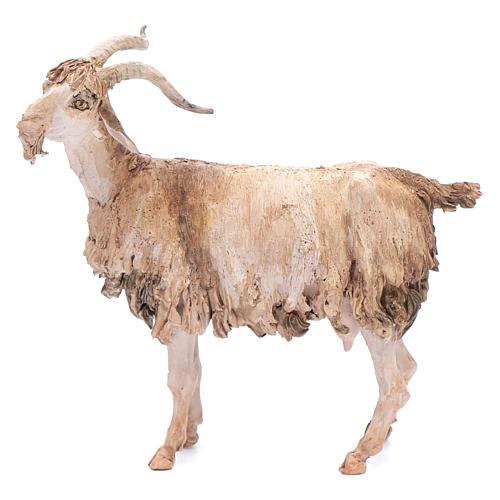 Goat 30cm Angela Tripi Nativity Scene | online sales on