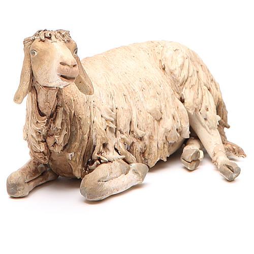 Mouton allongé 30 cm crèche Angela Tripi 1