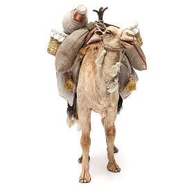 Chameau avec sacs crèche Angela Tripi 30 cm s4