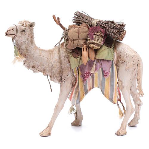 cbf2a47b499 Camello Cargado Belén Angela Tripi 18 cm 1