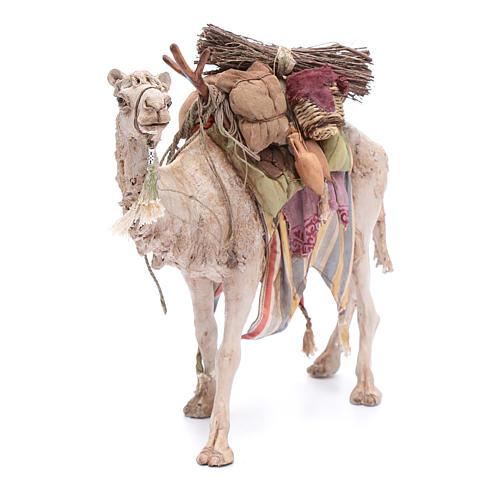 5496b0a73d7 Camello Cargado Belén Angela Tripi 18 cm 4
