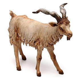 Chèvre 30 cm crèche Angela Tripi en terre cuite s2