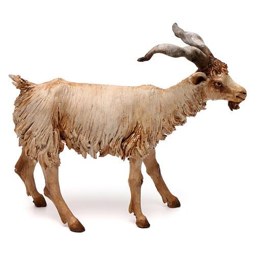 Chèvre 30 cm crèche Angela Tripi en terre cuite 1