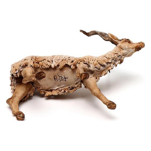Chèvre 30 cm crèche Angela Tripi en terre cuite 6