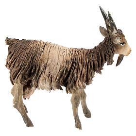 Chèvre blanche marron tête haute 13 cm Angela Tripi s4