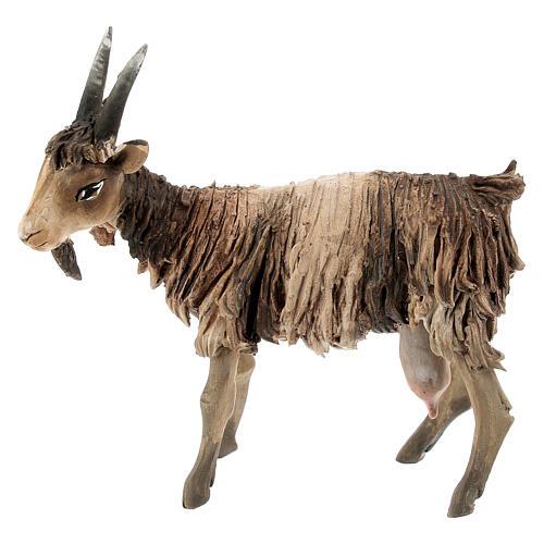 Chèvre blanche marron tête haute 13 cm Angela Tripi 1