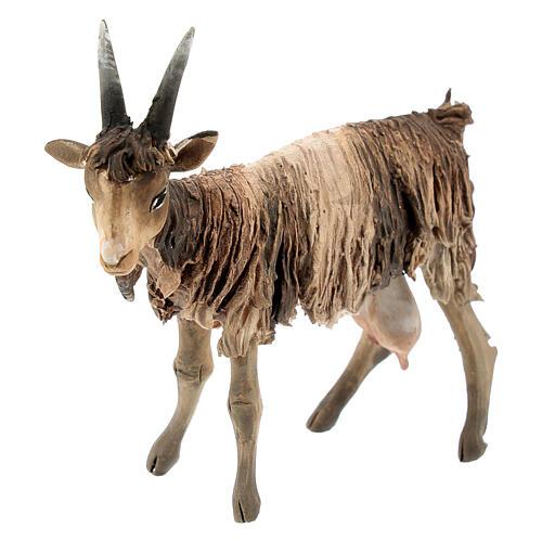 Chèvre blanche marron tête haute 13 cm Angela Tripi 2