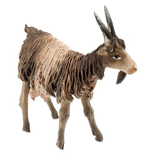 Chèvre blanche marron tête haute 13 cm Angela Tripi 3