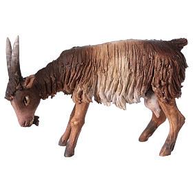 Chèvre blanche marron tête baissée 13 cm Angela Tripi s3