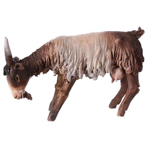 Chèvre blanche marron tête baissée 13 cm Angela Tripi 1