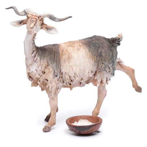 Pastore che munge la capra 30 cm presepe Angela Tripi 6