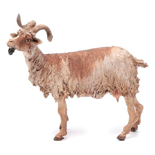 Cabra para belén 30 cm Angela Tripi 1