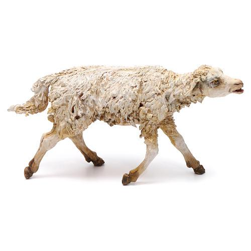 Scena pastore con pecora e bambini presepe 18 cm Angela Tripi 7