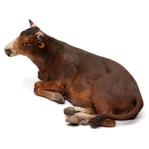 Lying ox by Angela Tripi 18 cm 4