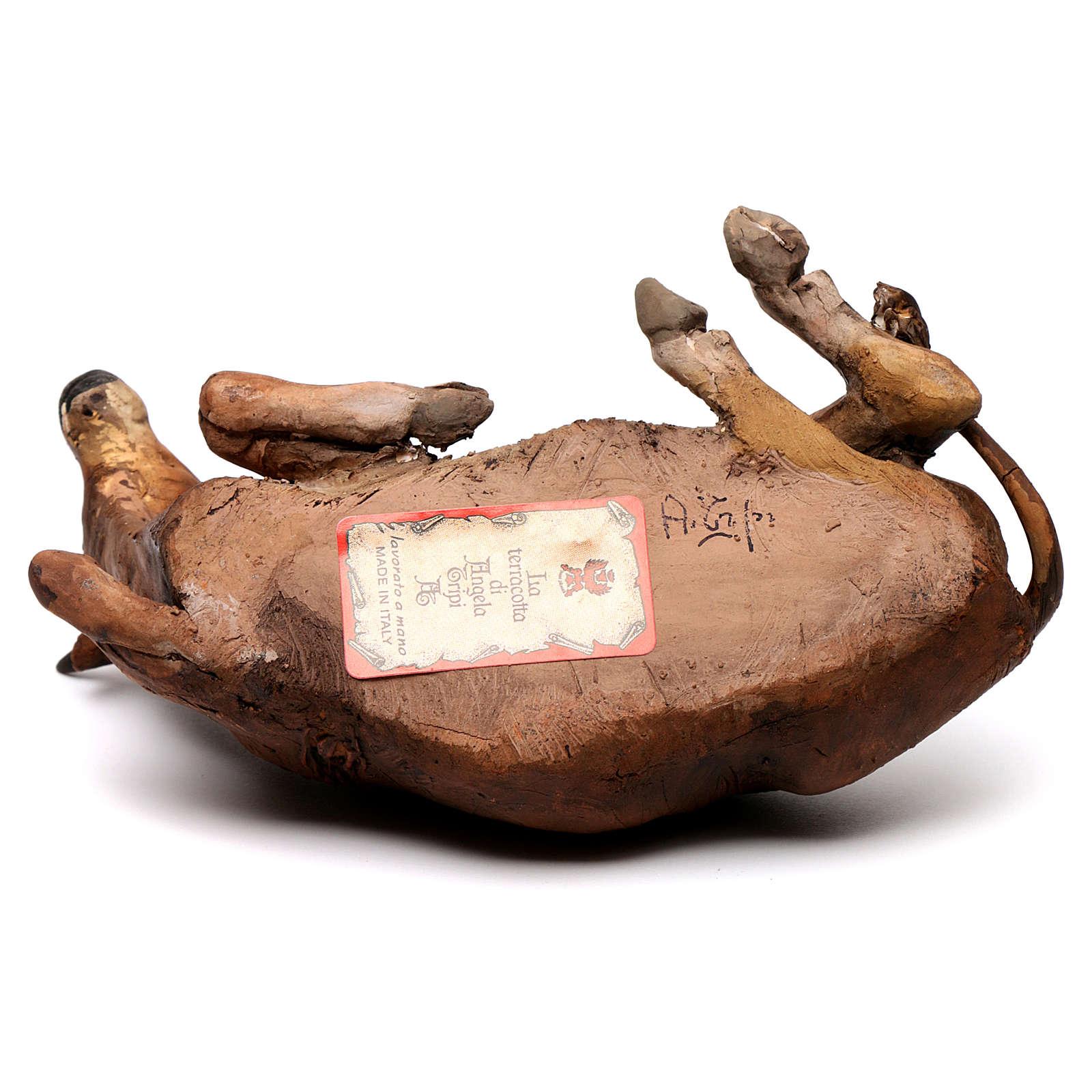 Boi deitado no chão Presépio Angela Tripi 18 cm 4