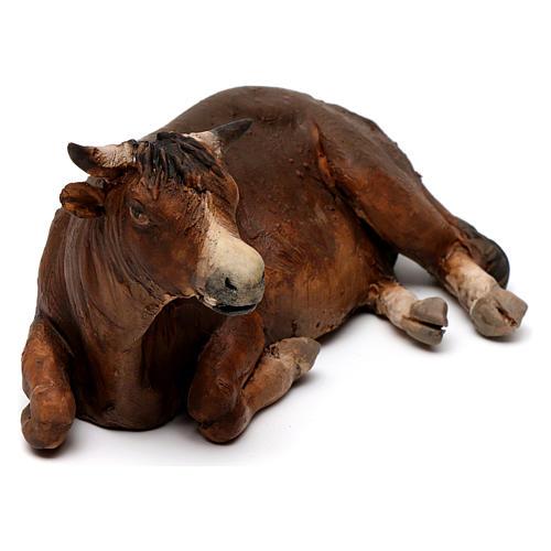 Boi deitado no chão Presépio Angela Tripi 18 cm 2