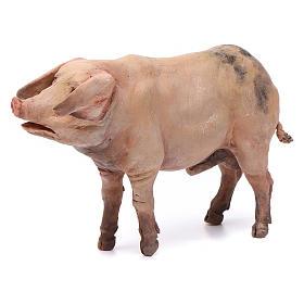 Cochon pour crèche Angela Tripi 18 cm s1