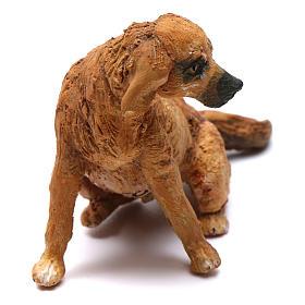 Cane per presepe Angela Tripi 18 cm s2