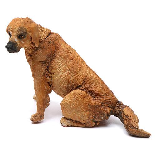 Cane per presepe Angela Tripi 18 cm 1