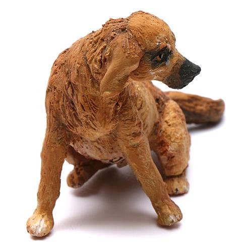 Cane per presepe Angela Tripi 18 cm 2