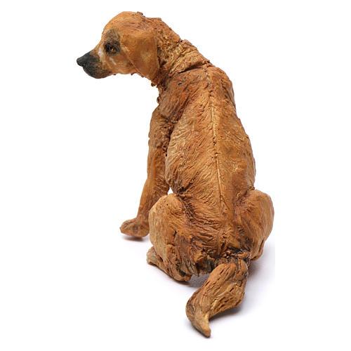 Cane per presepe Angela Tripi 18 cm 3