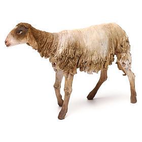 Mouton pour crèche Angela Tripi 30 cm s4