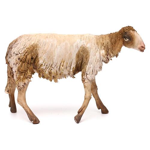 Mouton pour crèche Angela Tripi 30 cm 1