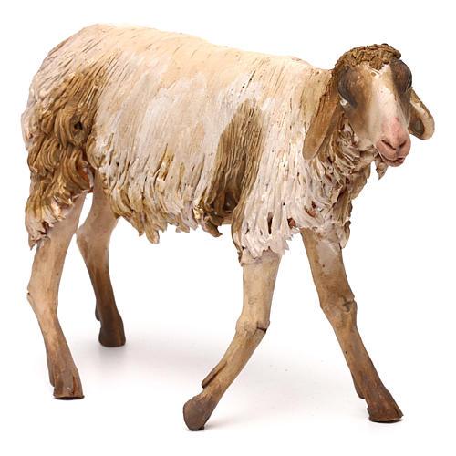 Mouton pour crèche Angela Tripi 30 cm 3