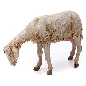 Pecorella per presepe Angela Tripi 30 cm s3