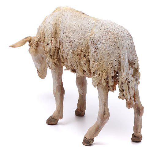 Pecorella per presepe Angela Tripi 30 cm 4