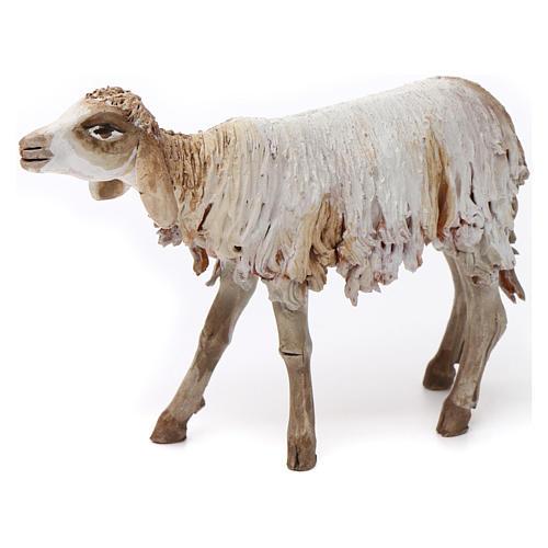 Mouton terre cuite pour crèche 18 cm Angela Tripi 1