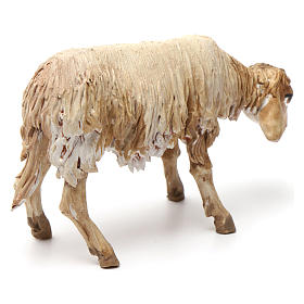 Lying sheep figurine for Nativity Angela Tripi 18 cm s3