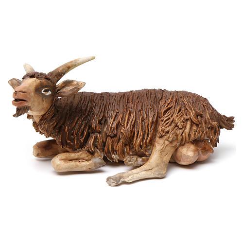 Chèvre allongée pour crèche 18 cm Angela Tripi 1