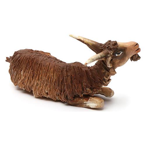 Chèvre allongée pour crèche 18 cm Angela Tripi 2