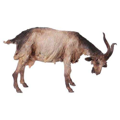 Cabra de pie 30 cm de altura media belén Angela Tripi 1