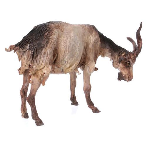 Cabra de pie 30 cm de altura media belén Angela Tripi 5