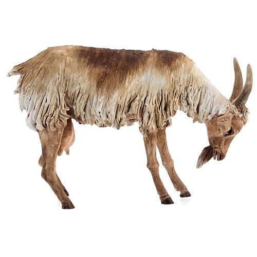Chèvre debout 30 cm crèche Angela Tripi 1