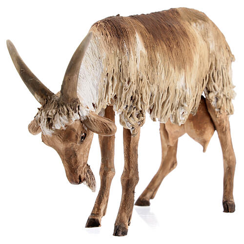 Chèvre debout 30 cm crèche Angela Tripi 4