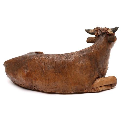 Bue seduto in terracotta presepe 18 cm Tripi  3