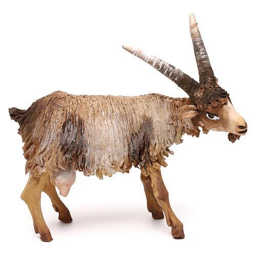Baby goat figurine 18 cm, in terracotta, nativity Tripi