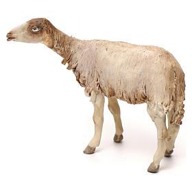 Pecorella in piedi statua presepe 30 cm Tripi  s4