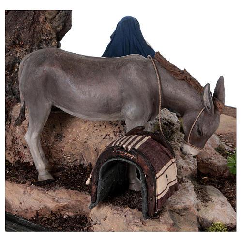 Reposo de José en la Fuga de Egipto 25 cm Angela Tripi 9