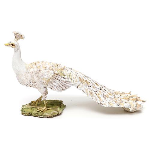Albino peacock, 18 cm Angela Tripi 1