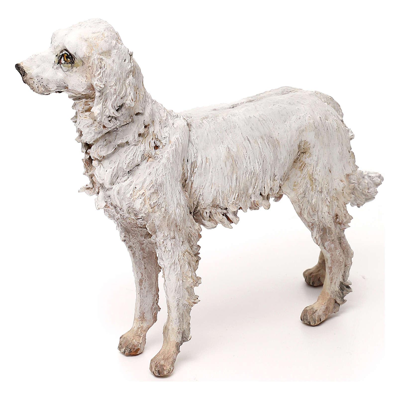 Perro 30 cm belén Tripi 4